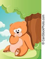 söt, björn