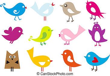 söt, fåglar