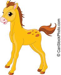 söt, häst, föl