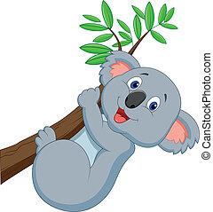 söt, koala, tecknad film