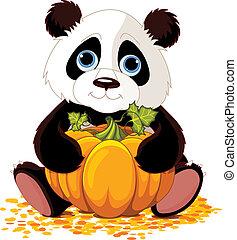 söt, panda
