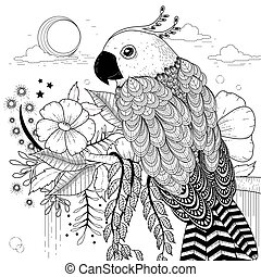 söt, papegoja