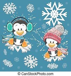 söt, pingviner, två