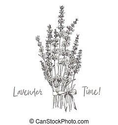 söt, skiss, blomma, naturlig, romantisk, lavander, bukett, ...