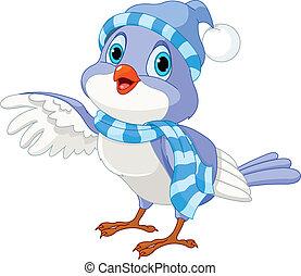 söt, vinter, fågel