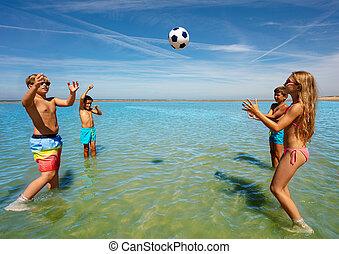 söt, volleyboll, vatten, grupp, lurar, lek, lycklig