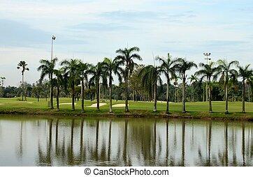 sø, sand fælde, håndflade træ, og, golf