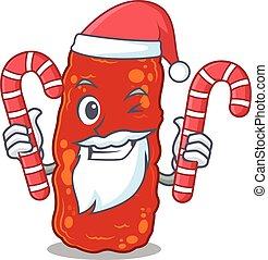 süßigkeiten, feundliches , bakterien, zeichen, santa, hält, weihnachten, acinetobacter, karikatur
