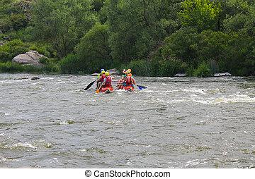 südlich, Fluß, wildwasserrafting, Wanze