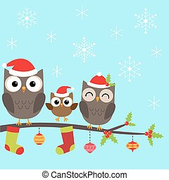 sýček, vánoce, rodina