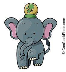 słoń, cyrk, rysunek