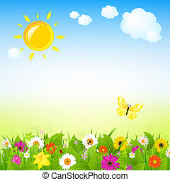 słońce, kwiaty