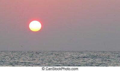 słońce, na, summer., ascends, morze
