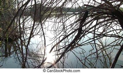 słońce, odbijanie się, jezioro, spokój