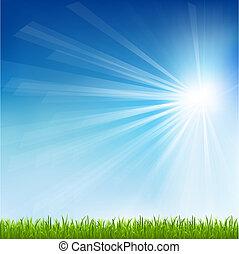 słońce, trawa, zielony, belka