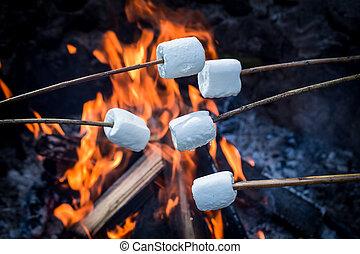 słodki, na, wtykać, zachwycający, marshmallows, ognisko