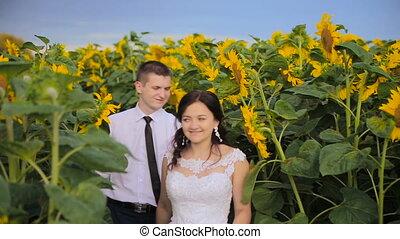 słoneczniki, para, otoczony, miłość