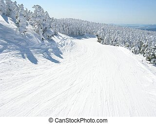 słoneczny dzień, ślad narty