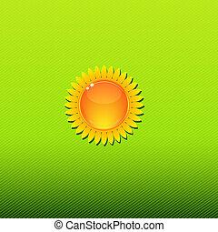 słoneczny, zielone tło