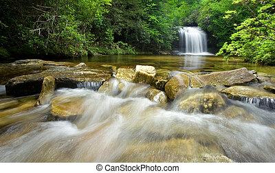 sűrű erdő, vízesés