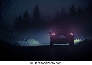 sűrű, köd, vidéki táj, autózás
