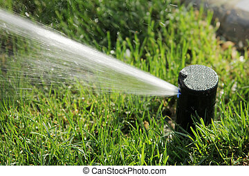 s, aguando, capim, irrigador