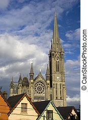 s., colman, catedral, en, cobh