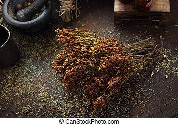 s., hierbas, cuisine., secado, medicina, wort, john's