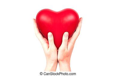 saúde, conceito, Amor, seguro, ou