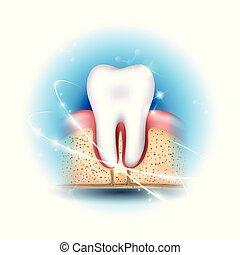 saúde dental, cuidado