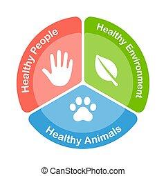 saúde, diagrama, um