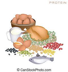 saúde, e, nutrição, benefícios, de, proteína, alimentos