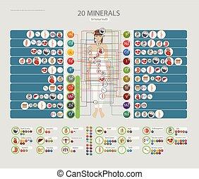 saúde, minerais, human