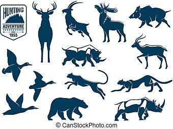 sabana, animales, bosque, caza, iconos
