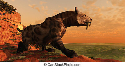 Saber-Tooth Cat 01 - A Smilodon Cat from prehistoric times...