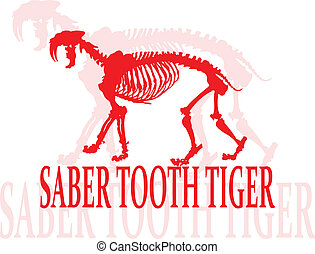 Saber tooth tiger. - Skeleton of a saber tooth tiger.