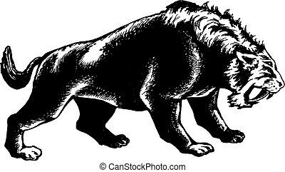 saber-toothed tiger - hand drawn, vector, sketch...