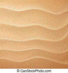 sable, gros plan, modèle, regard