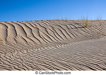 sable, herbe, marram, dune, même