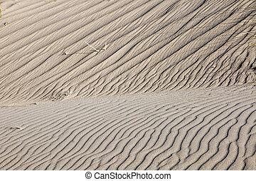 sable, herbe, quelques-uns, dune, marram