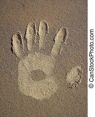 sable, main