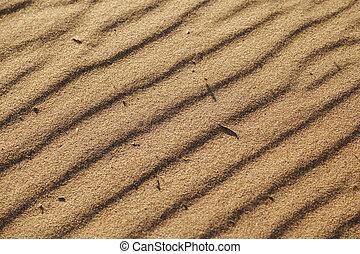 sablonneux, arrière-plan., dunes, sand., formé, ondulations, collé, sable, texture bois, surface, chips, vent