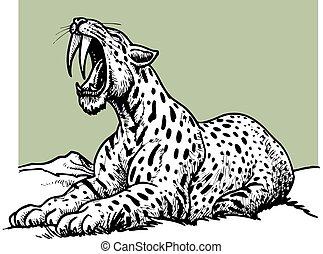 sabre, -, tigre, préhistorique, denté, animal