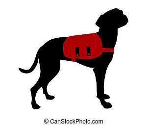 sac à dos, chien