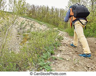 sac à dos, promenade, montant, piste, forêt, homme