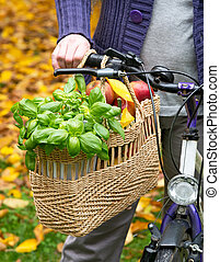 sac à provisions, à, vélo