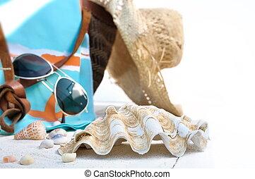 sac, palourde géante, plage