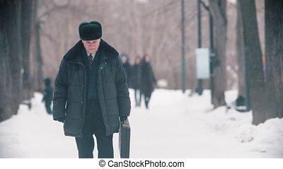 sac, personnes agées, chute neige, marche homme, parc, quoique