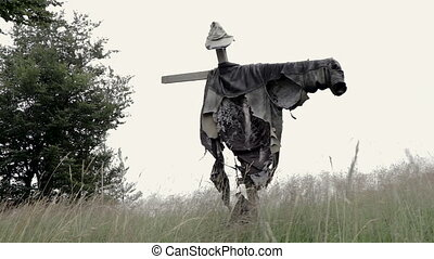 Scarecrow on Green Rice farm
