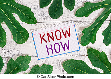 sachen, time., wille, wissen, text, how., begrifflich, prozess, lernen, ausstellung, foto, zeichen, zuerst, sie